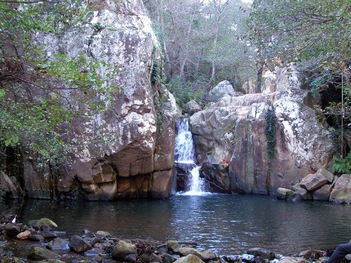 parc-naturel-des-alcornocales-cadix