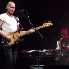 Sting lors du Life festival en 2013