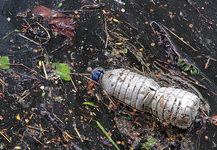 La pollution des océans : un problème majeur pour l'environnement et la santé.