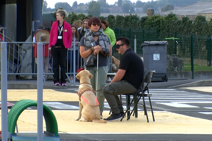 Démonstration d'éducation canine au centre Paul Corteville